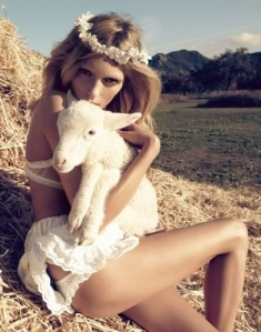 animal-animals-beautiful-beauty-curves-editorial-Favim.com-38883