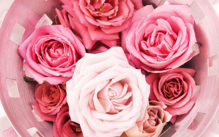 I am Passionate About RosePerfume